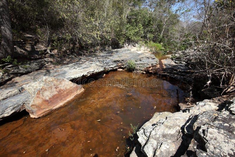 Rivierlandschap van Caatinga in Brazilië stock fotografie