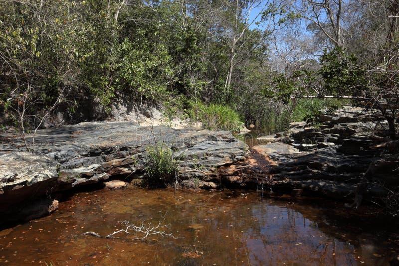Rivierlandschap van Caatinga in Brazilië stock foto's