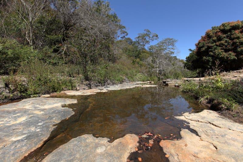 Rivierlandschap van Caatinga in Brazilië royalty-vrije stock foto