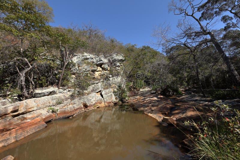 Rivierlandschap van Caatinga in Brazilië royalty-vrije stock afbeeldingen