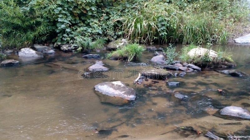 rivieroever stock afbeeldingen