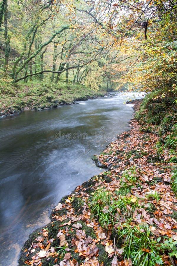 Rivierpijltje bij Holne-Brug, Dartmoor Engeland royalty-vrije stock afbeeldingen