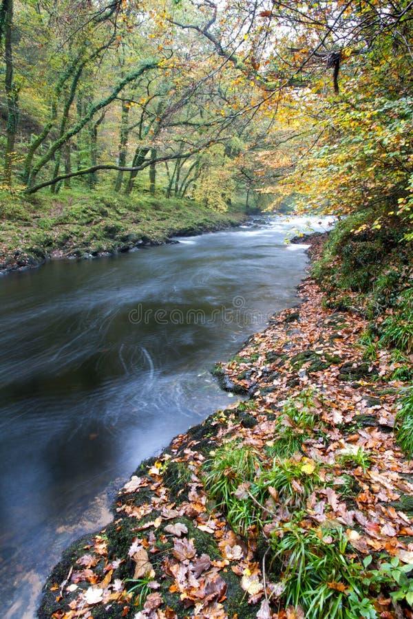 Rivierpijltje bij Holne-Brug, Dartmoor Engeland royalty-vrije stock fotografie