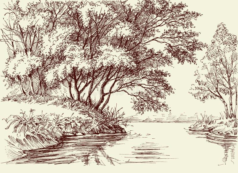 Rivierstroom in het hout royalty-vrije illustratie
