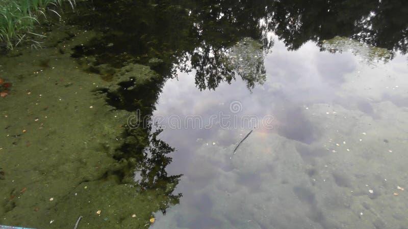 Riviervolga rivieroever tver stock afbeelding