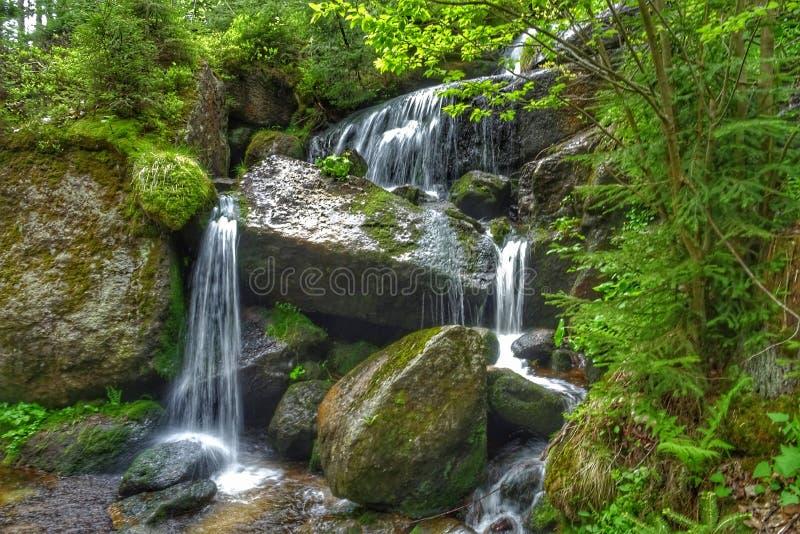 Rivierwaterval in de berg van Europa stock foto