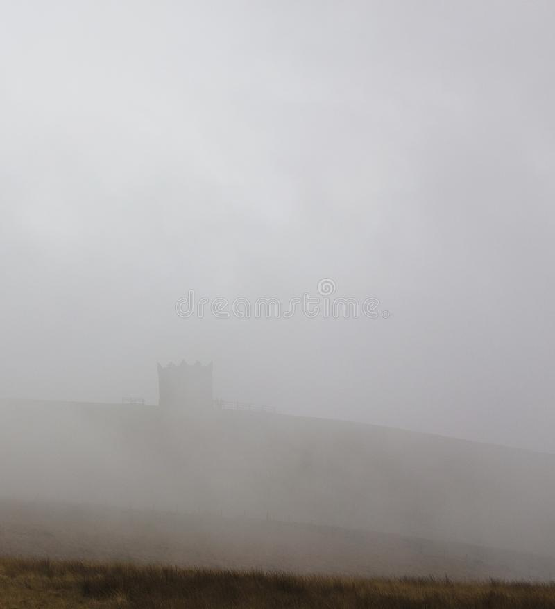 Rivingtonsnoeken in mist stock afbeelding