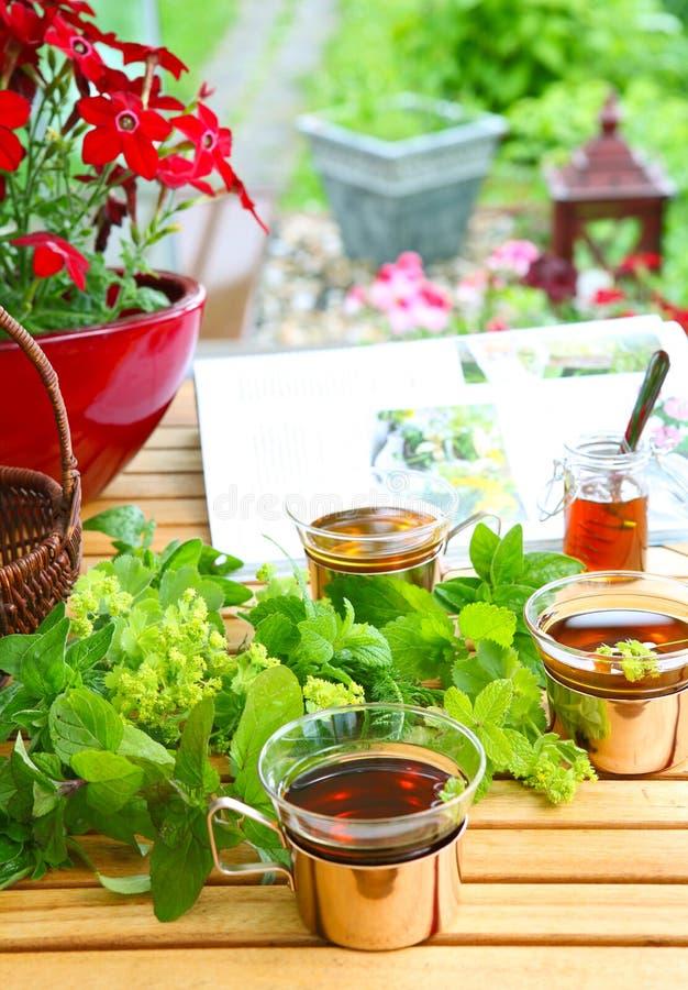 Rivista e tè del giardino fotografia stock