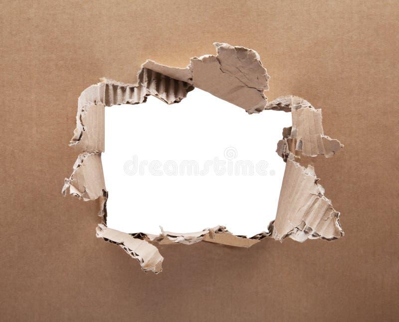 Rivit sönder hål i papp på vit bakgrund royaltyfria bilder