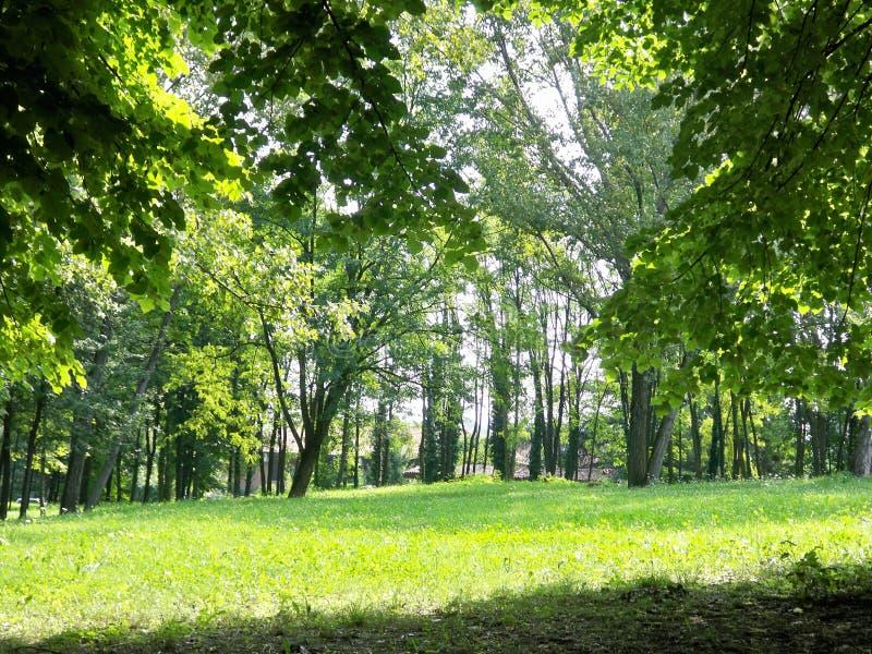 Rivoli - park royalty free stock photo