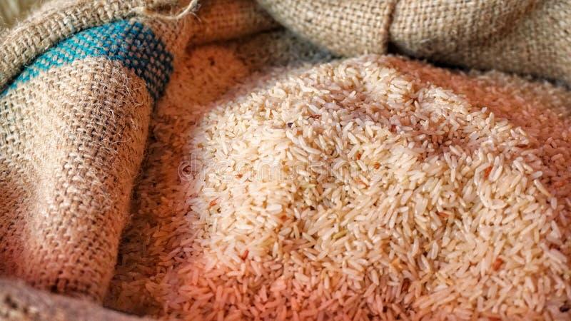 Riz brun dans le sac photographie stock libre de droits