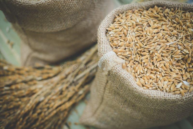 riz brun de grain dans le sac de sac à toile de jute photo libre de droits