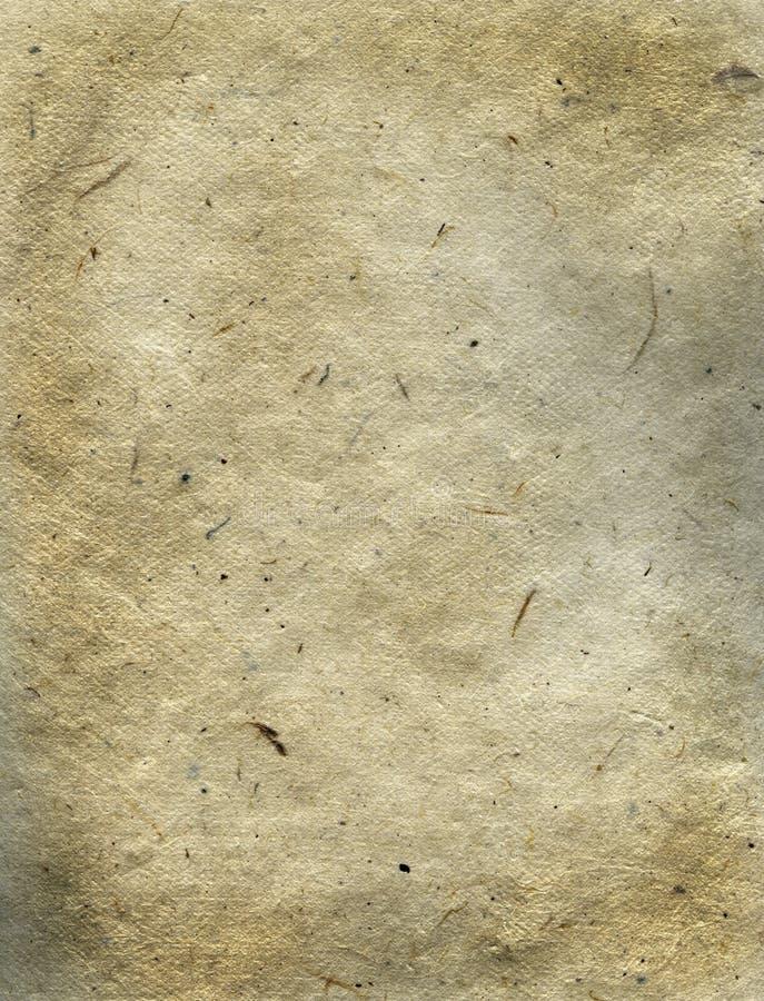 riz de papier fibreux images libres de droits