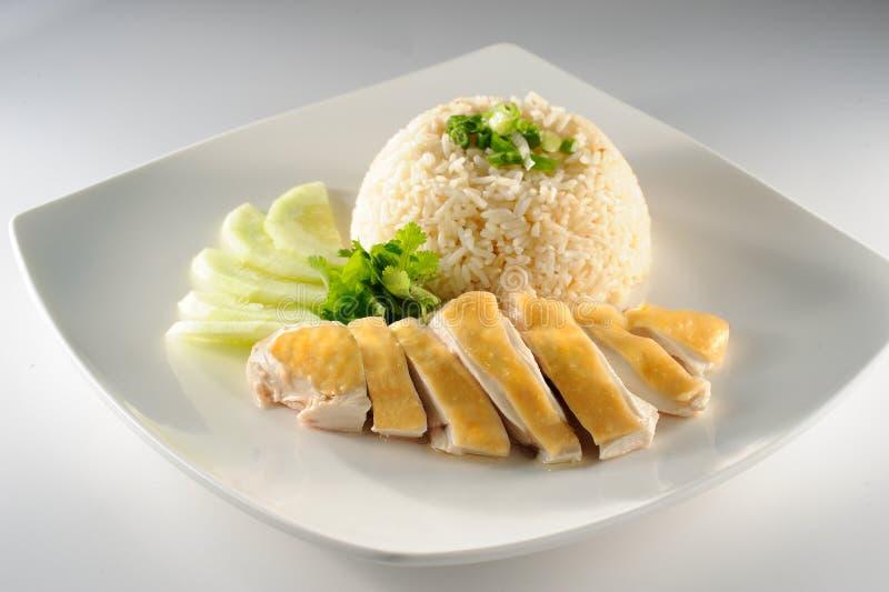 Riz de poulet photographie stock libre de droits