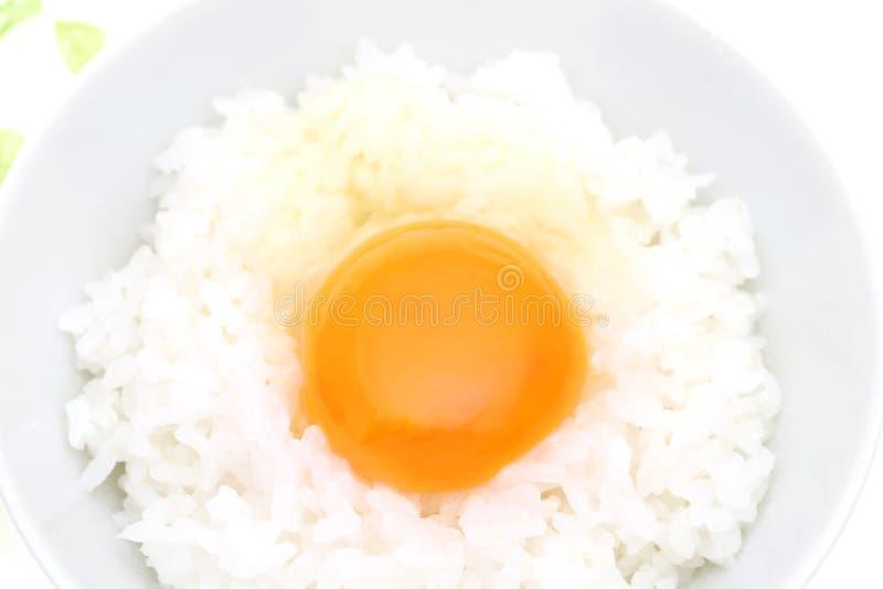 Riz japonais avec l'oeuf photos stock