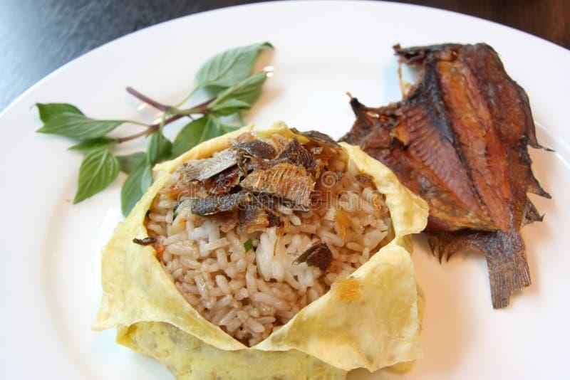 Riz thaï de poissons image stock