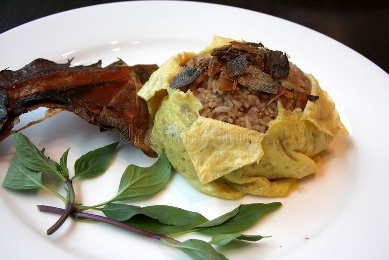 Riz thaï de poissons images stock