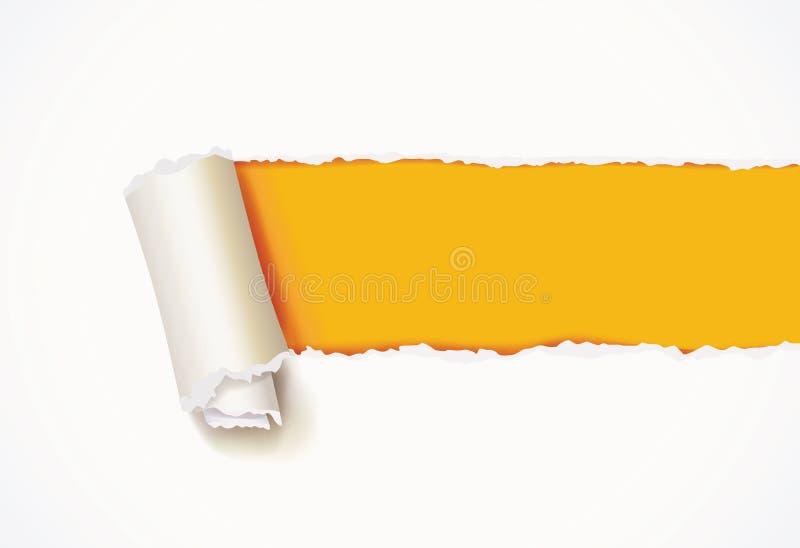 Rizo del Libro Blanco Papel rasgado libre illustration