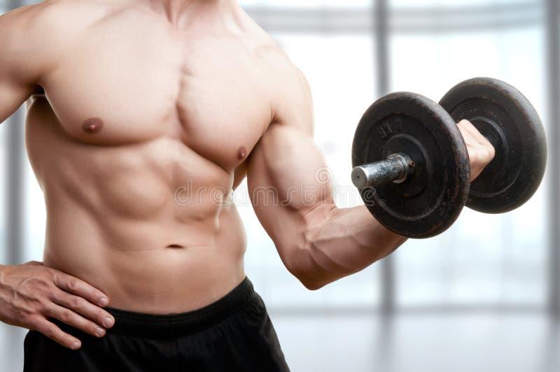 Rizo derecho de la pesa de gimnasia del bíceps imágenes de archivo libres de regalías