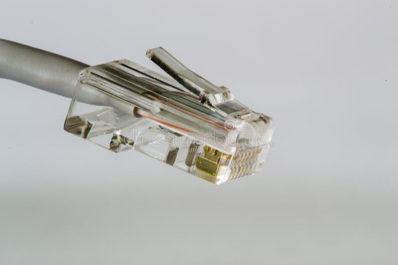 RJ-45网络插座 图库摄影