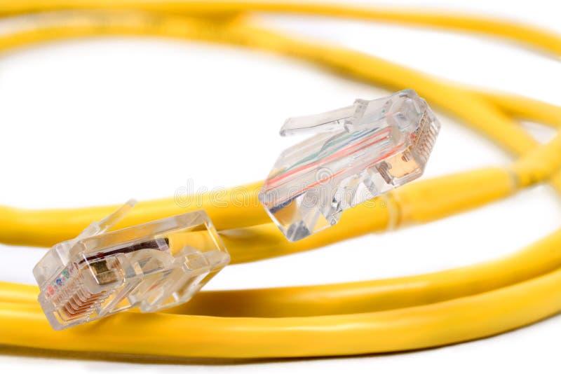 Rj-45 en Kat 5 Kabel stock afbeelding