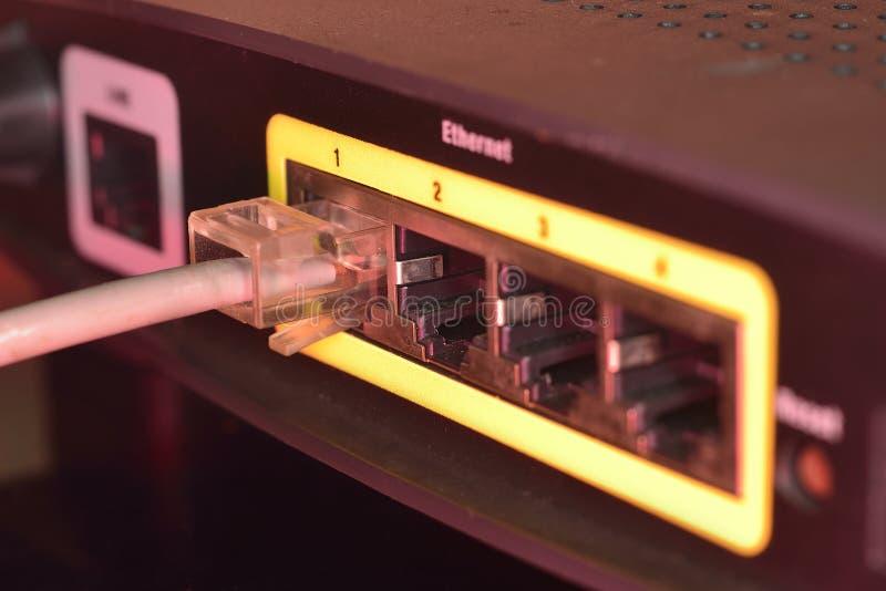 Rj45 relié à la prise dans le routeur photo stock