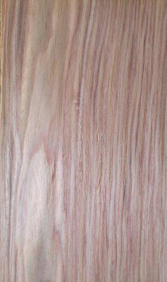 Rlmo Elm wood, Veneer Pattern brown wooden material finish surface furniture burr texture wall background. Surrounding stock images