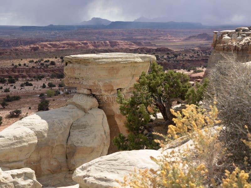 Roślinność, Rockowe formacje i Mały Grand Canyon, zdjęcie stock