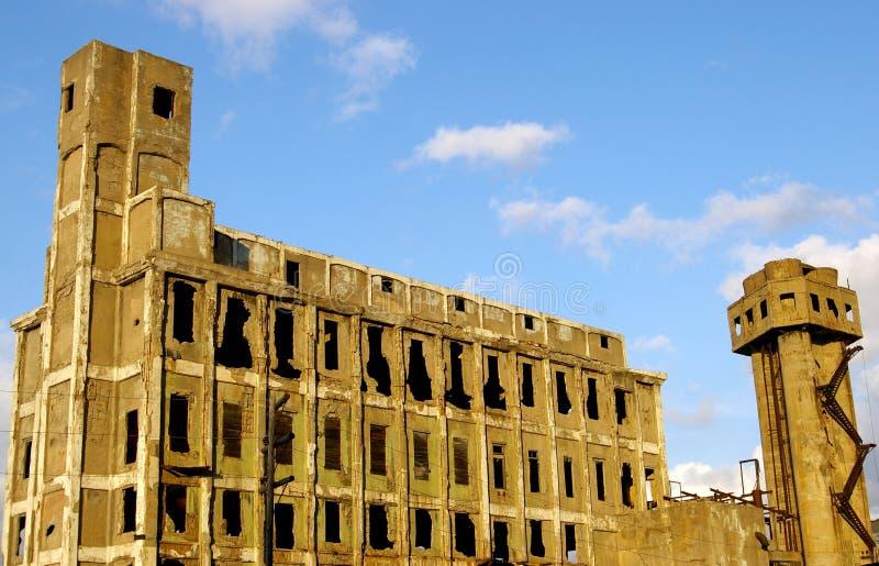 rośliien ruiny zdjęcie stock