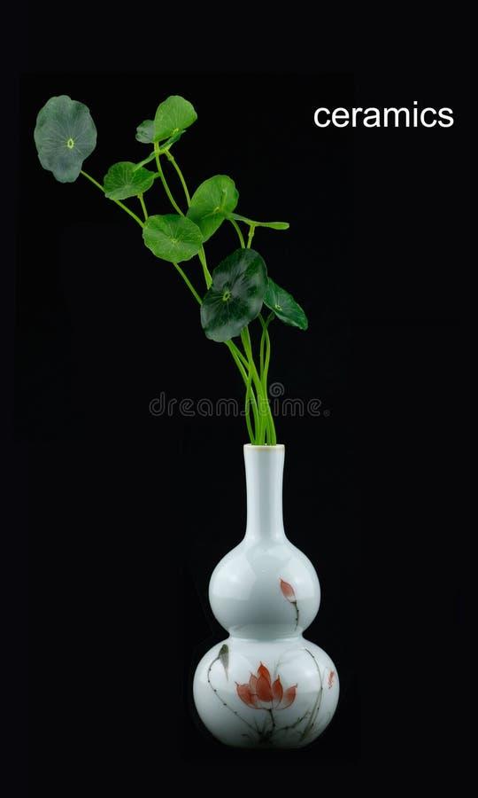 Roślina i ceramiczni wazowi elementy obrazy stock