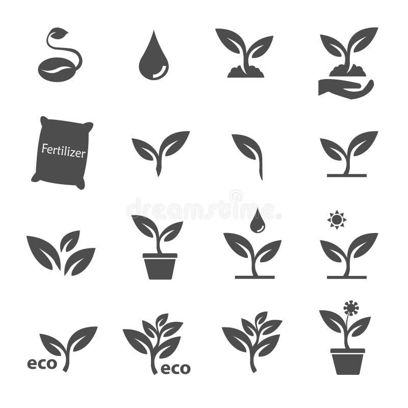 Roślina i urlopu ikona ustawiający wektor zdjęcie royalty free