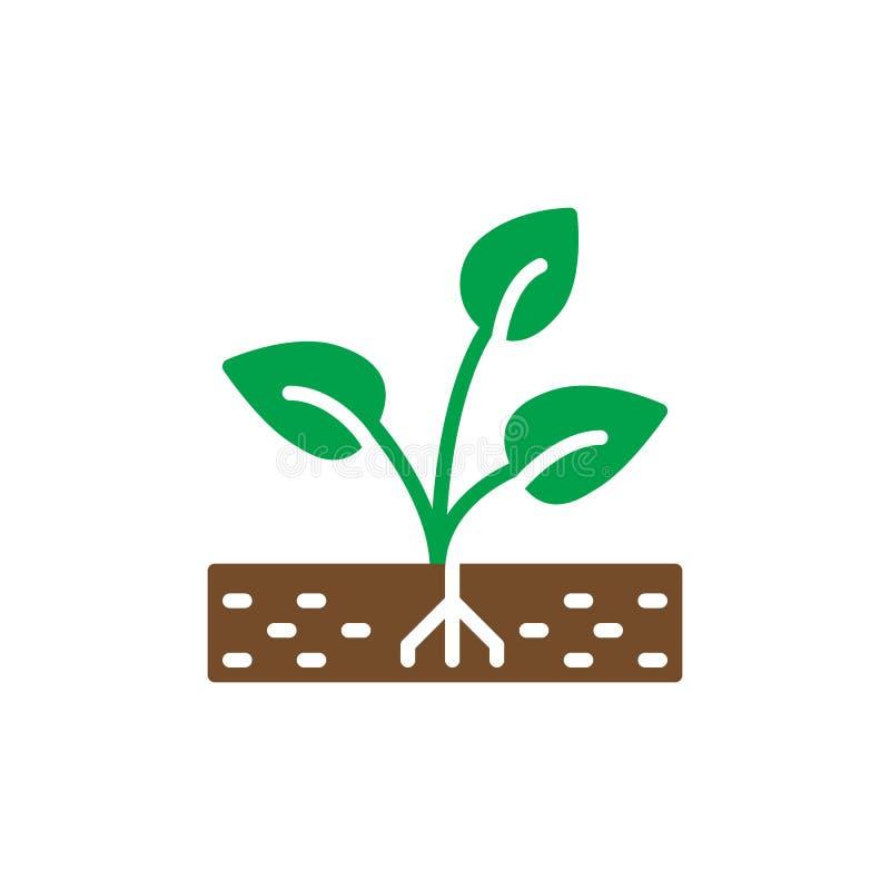 Roślina, kiełkowy ikona wektor, wypełniający mieszkanie znak, stały kolorowy piktogram ilustracja wektor