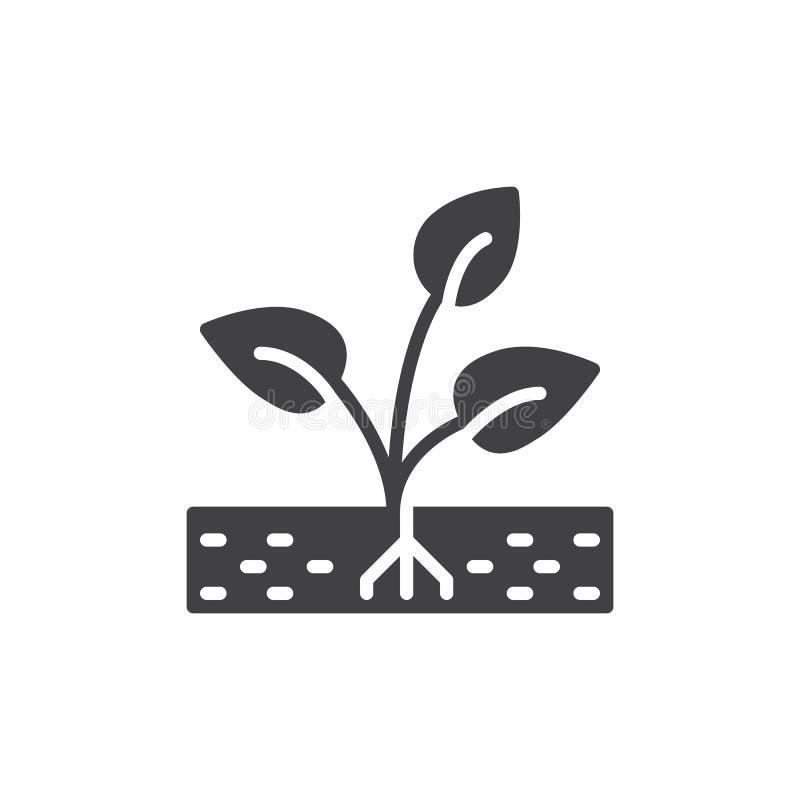 Roślina, kiełkowy ikona wektor, wypełniający mieszkanie znak, stały piktogram odizolowywający na bielu Symbol, logo ilustracja ilustracji
