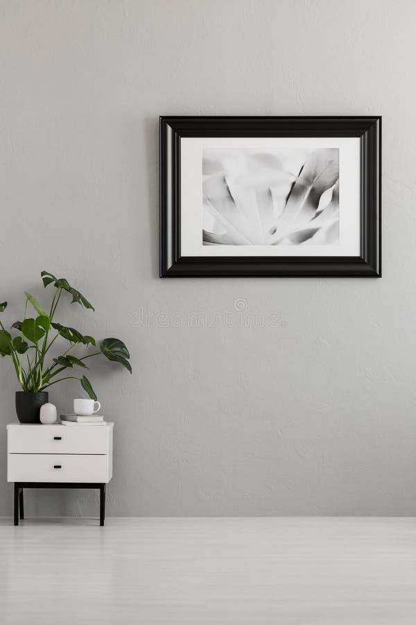 Roślina na białym gabinecie w pustym popielatym mieszkania wnętrzu z pos obraz royalty free