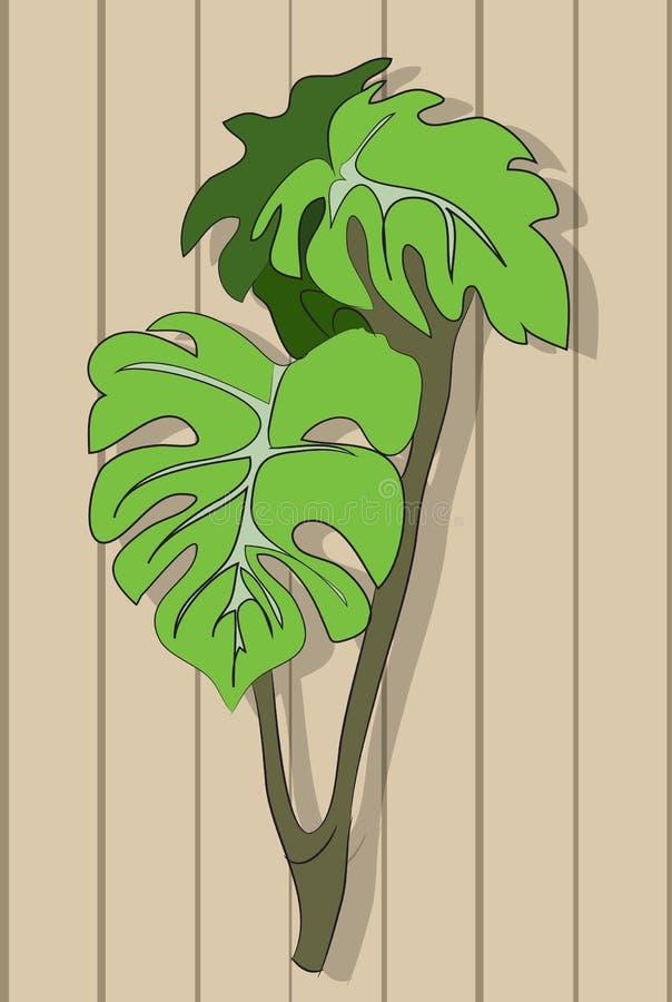 Roślina na tle drewniana ściana ilustracja wektor