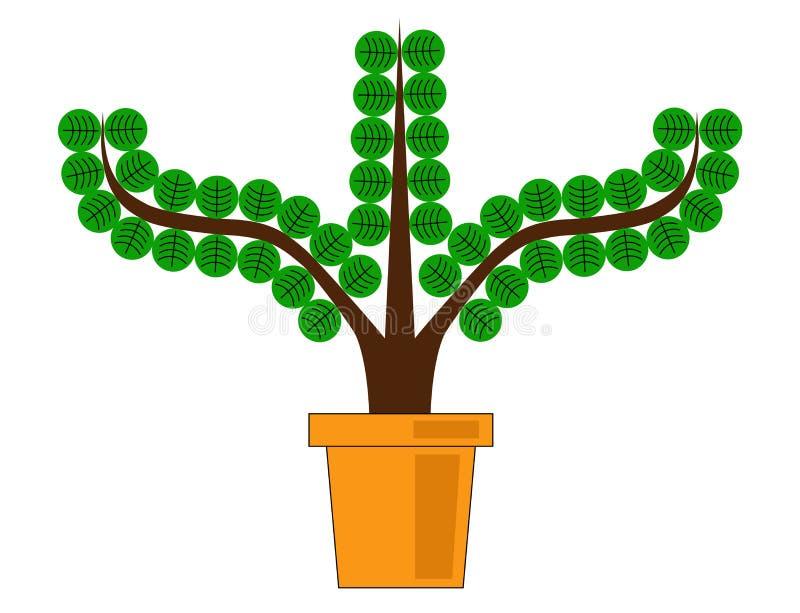 Roślina w garnku obrazy royalty free