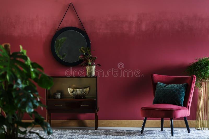 Roślina w siedzącym pokoju zdjęcia royalty free