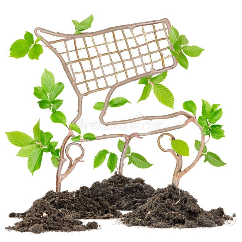 Rośliny fura fotografia stock