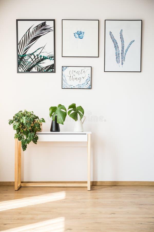 Rośliny na małym stole zdjęcie royalty free