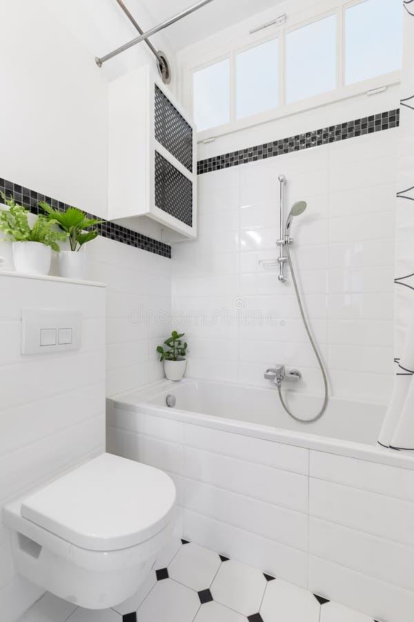 Rośliny nad toaleta w białym i czarnym łazienki wnętrzu z ca fotografia stock