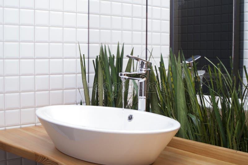 Rośliny w łazience fotografia stock