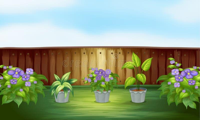 Rośliny w podwórku ilustracja wektor