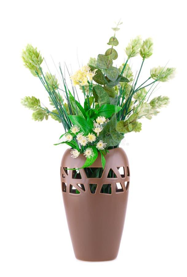 Rośliny w wazie zdjęcia royalty free