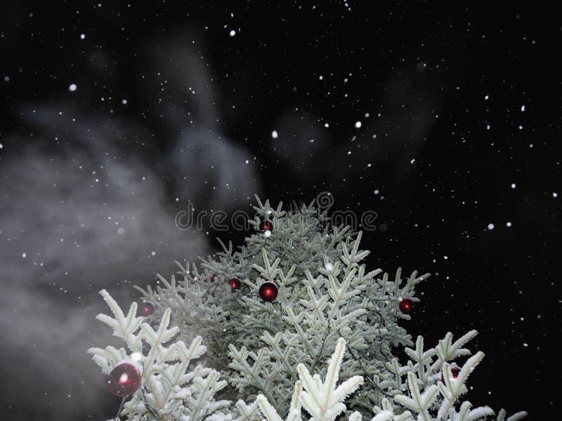 rośliny zamarznięta zima zdjęcie stock