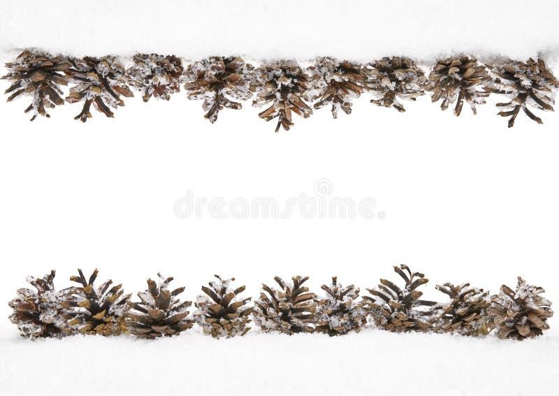 Rożka śnieg, zimy sosna rożek rama, Rabatowa dekoracja obraz royalty free