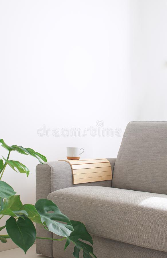 Ro acolhedor interior home da planta de Monstera da caneca de Sofa Coffee da sala de visitas fotografia de stock