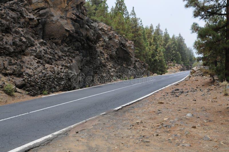 Road. To pico del teide on teneriffa stock image