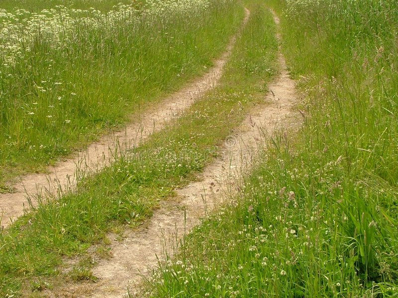 Download Road stock photo. Image of further, straight, road, county - 164978