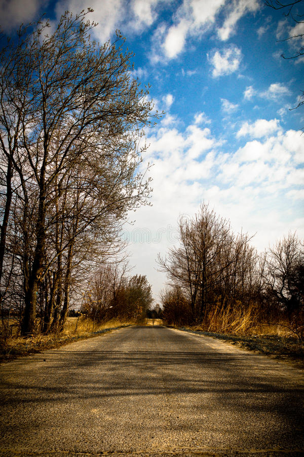Download Road stock image. Image of countryside, transport, success - 25031035