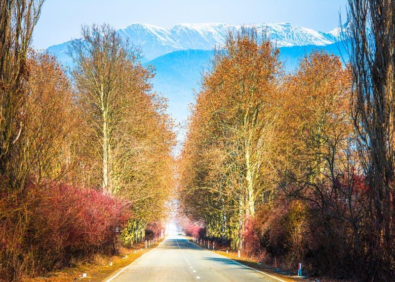 Road. And mountains in Kakheti region, Georgia royalty free stock photo